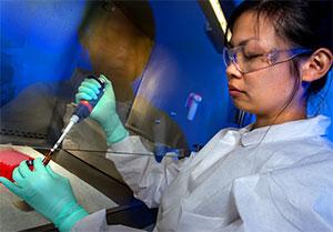 Coronavirus Insurance Claims - Coronavirus Research Scientist Image