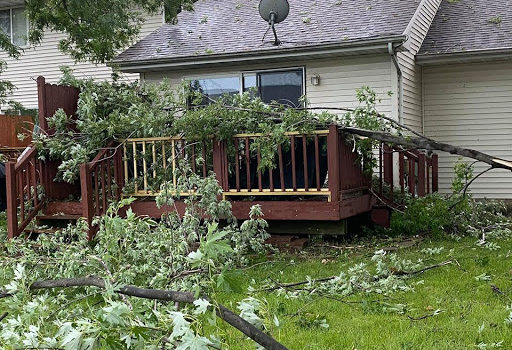 Storm Damage Tips - Storm damage to property image